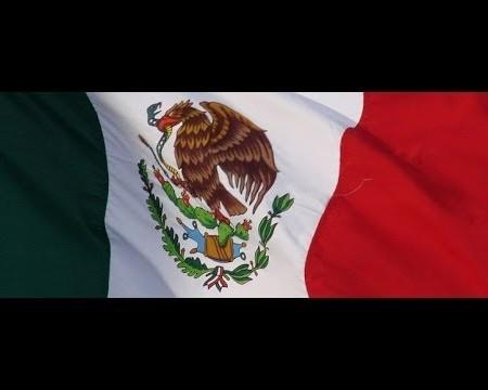 Las mejores IDEAS DE NEGOCIO dentro de MEXICO